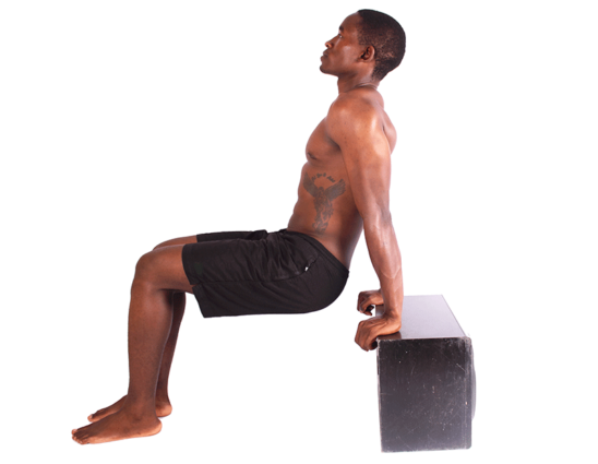 Shirtless Man Doing Triceps Bench Dips on White Background