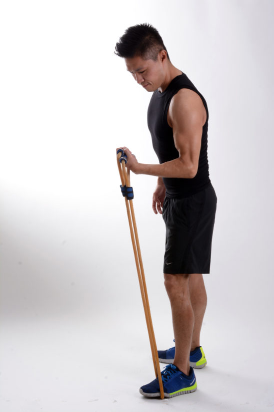 Fitness Man Doing Biceps Exercise With Resistance Bands