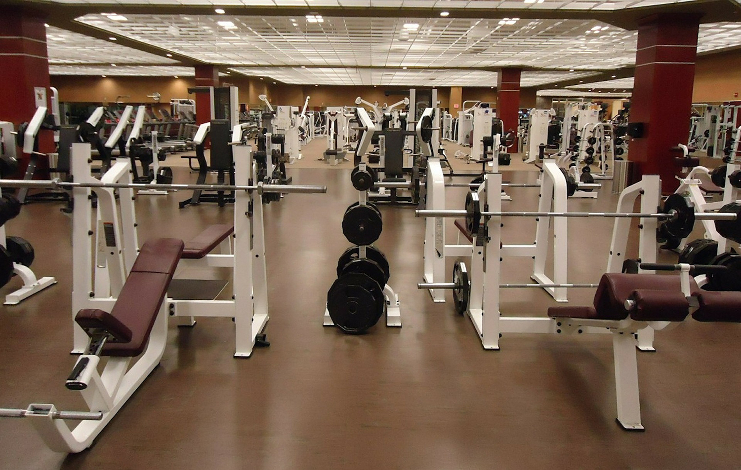 Modern Gym With Free Weights and Machines