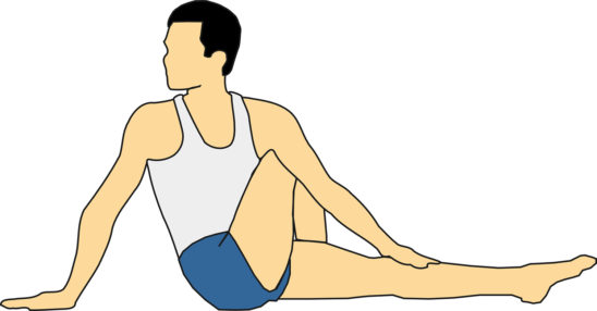 Vector of Seated Twist Yoga Pose
