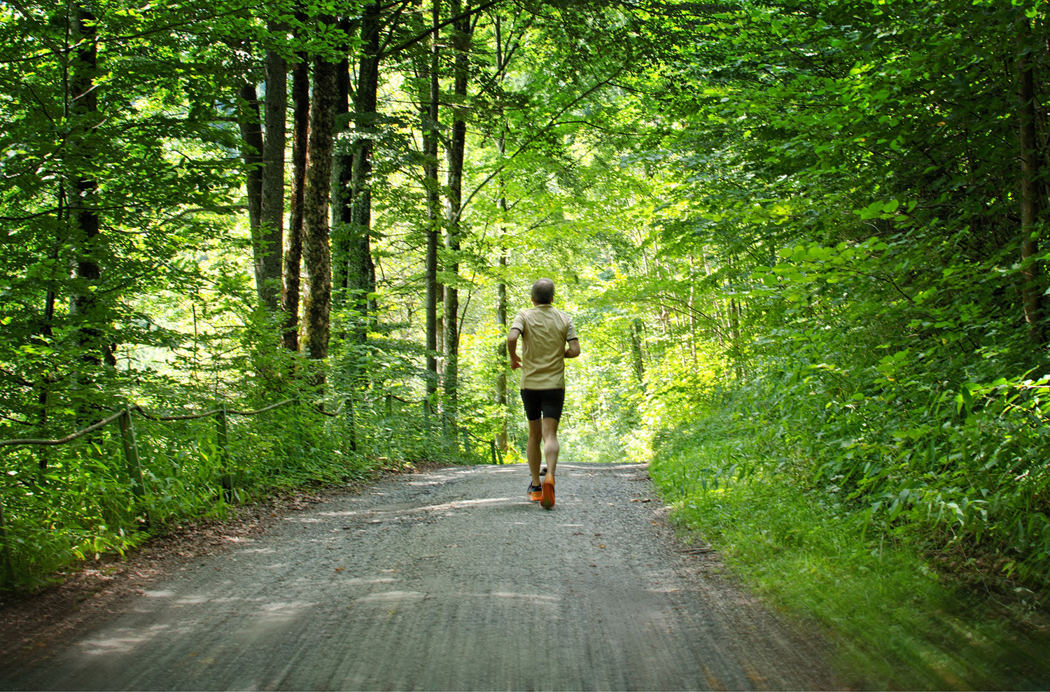 Jogger Man Running In the Forest