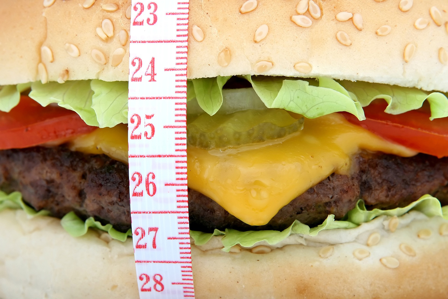 Hamburger and Tape Measure Dieting Concept