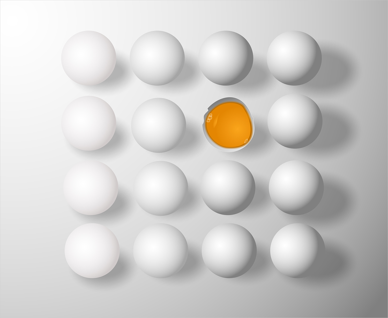 Vector Image Of Eggs Isolated on White Background