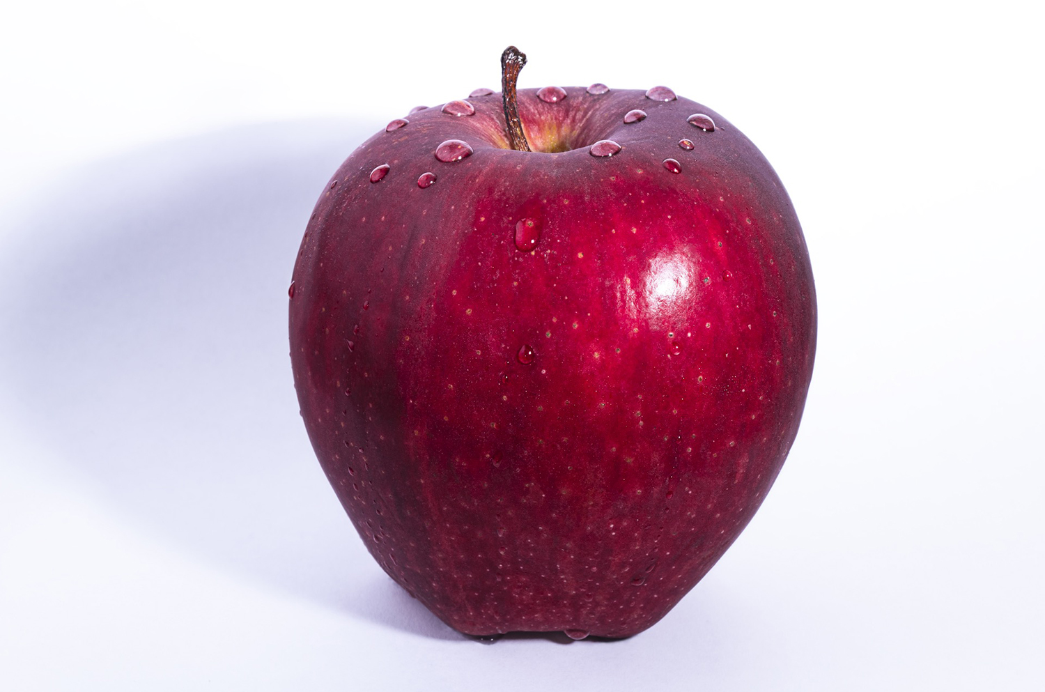 One Red Apple With Water Droplets