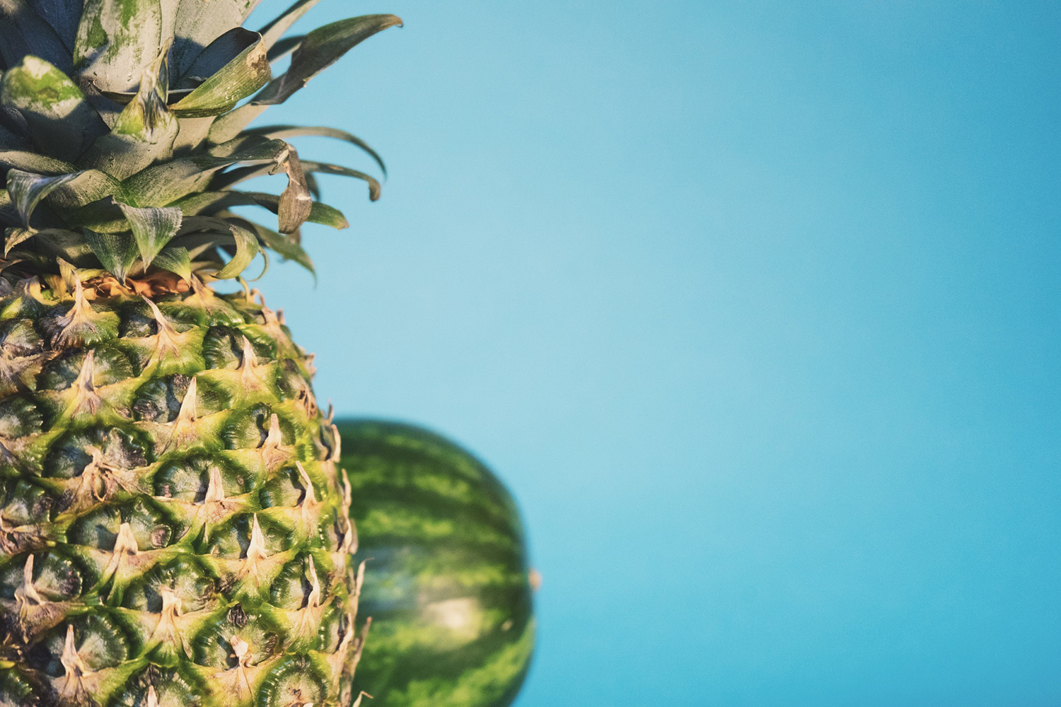 Fresh Pineapple and Watermelon on Blue Background