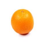 One orange on isolated white background