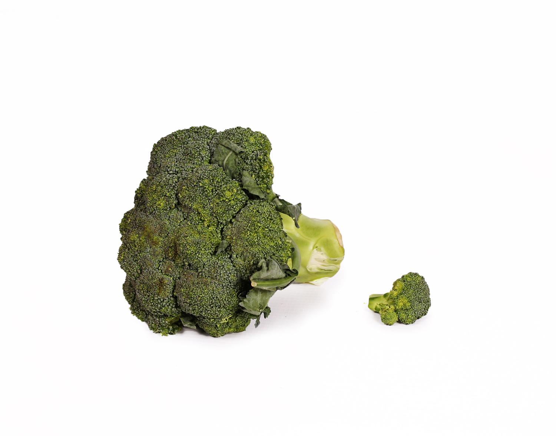 Broccoli on white background