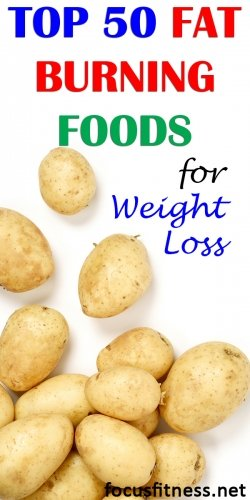 top 50 fat burning foods for weight loss